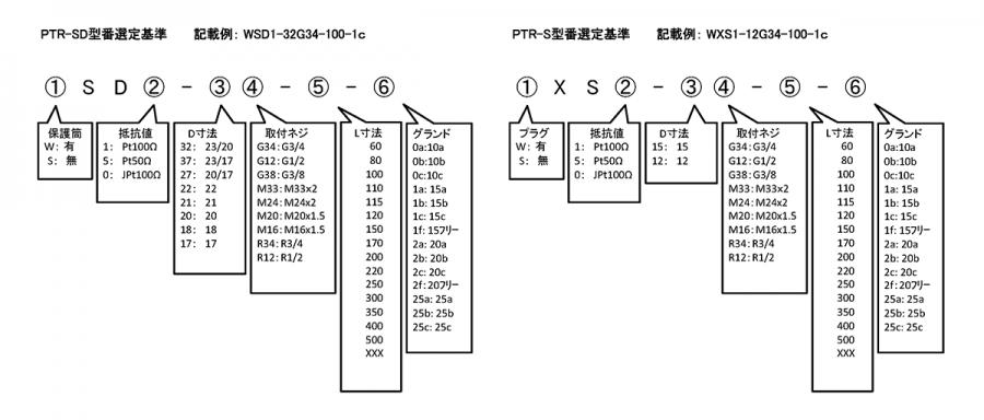 PTR-SD, PTR-S format