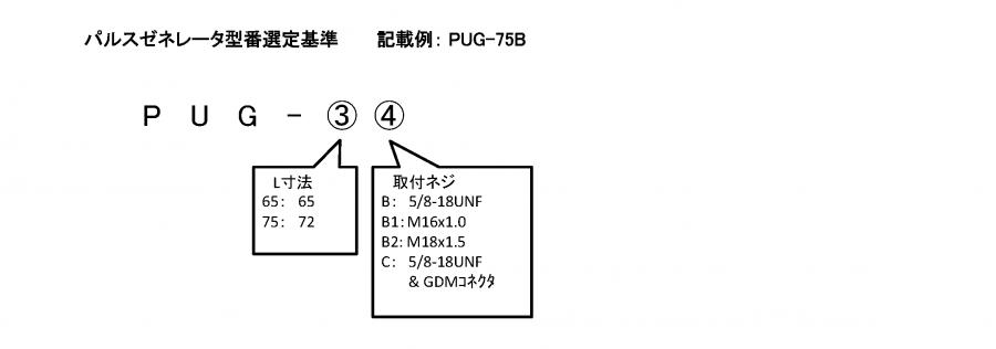 PUG  Pulse Generator format
