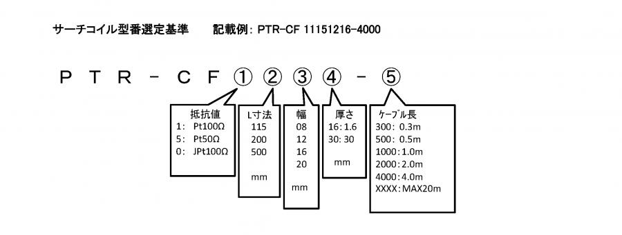 PTR-CF 形式