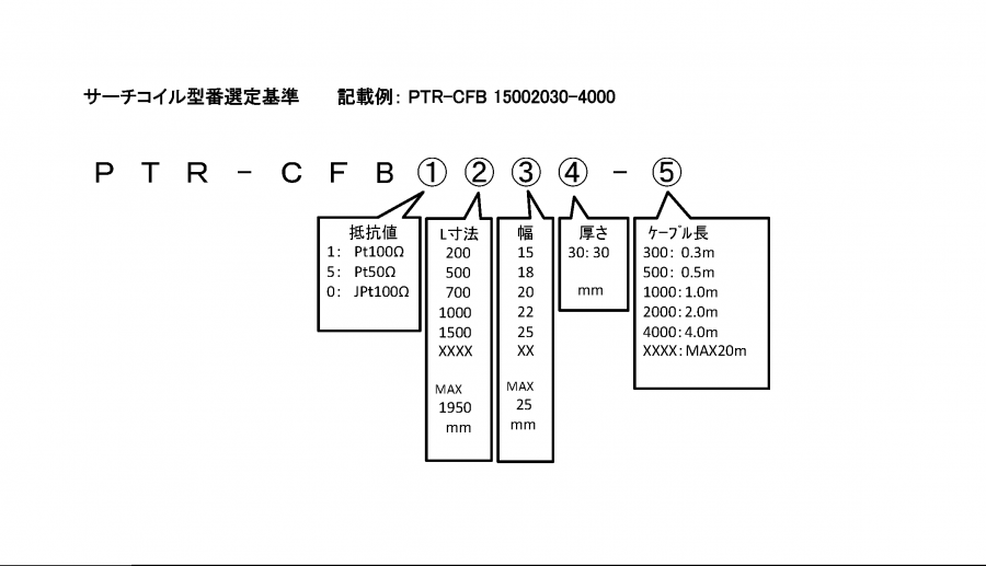 PTR-CFB 形式
