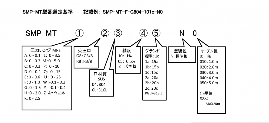 SMP-MT 形式